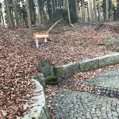 Studnička Bellmanns Brunnen Stadtwald