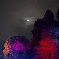 十月光影舞