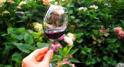 A beautiful glass of great wine!