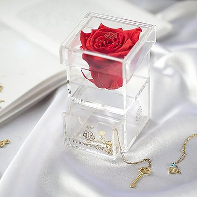 Last Time I visited Long Island, bought this preserved Rose Box for my sister. The store Eternal Roses have some really unique products. Let's support women & veteran led stores. This Christmas buy thoughtful gifts !