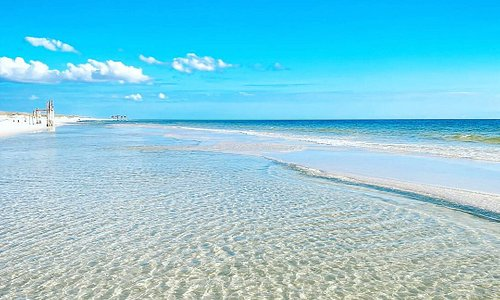 Shell Island is our favorite secret spot in Panama City Beach! Check out our website for more about Shell Island.