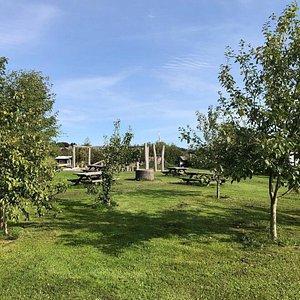 Frugtlund, picnicområde og naturlegepladsen i Eventyrskoven