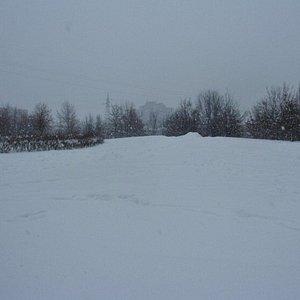 Parco con la neve