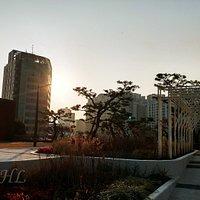 Seoul Station Rooftop Garden