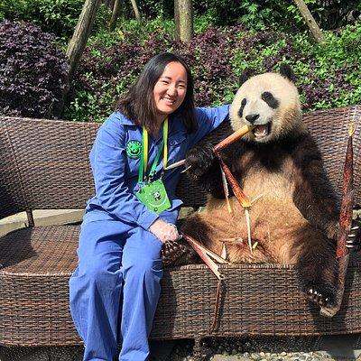 take a photo with panda