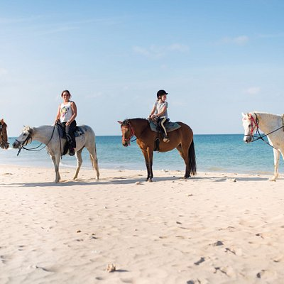 Morning beach ride with Tang, our cowboy, and a lovely family