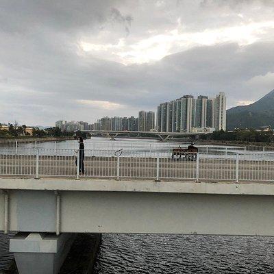 Twin Bridges on the Shing Mun River