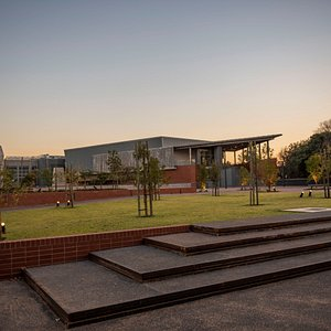 View of the Javett-UP from the University of Pretoria's south campus.  Photo: Alet Pretorius