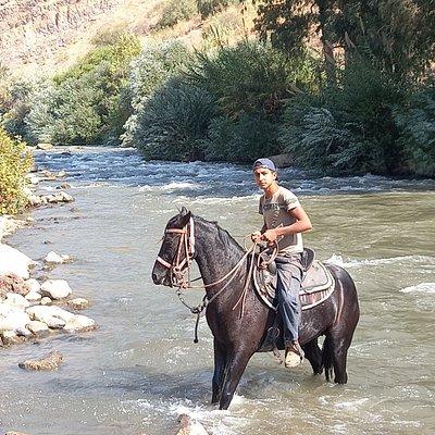 טיול סוסים ליד נהר הירדן