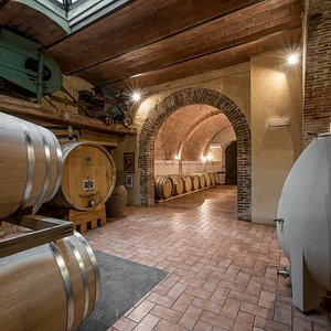 Fattoria del Colle ageing Cellar. French oak barrels for the ageing of Doc Orcia wines