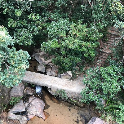 Tai Tam Country Park - small stream crossing