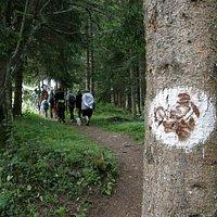 Sentier des Mines du Mont Chemin (Vollèges - Val de Bagnes)