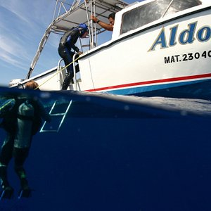 Aldora Divers - Only the best of Cozumel 04