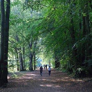 Lady Mary's Walk Crieff