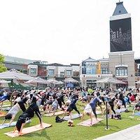 Weekly Yoga on the Plaza.