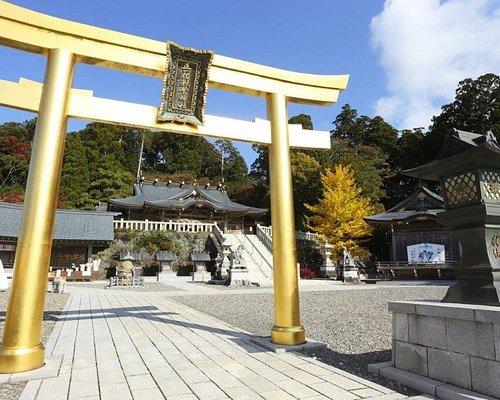 幸福の鳥居 / Torii (Gate) of happiness
