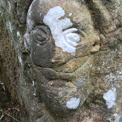 The strange ancient carving on the rock in Deepdale, Barnard Castle.