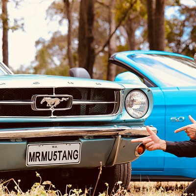 Mr Mustang Hire Commercial Photo Shoot - Vasse, WA (Photo credit Milena Di Latte Photogragphy)