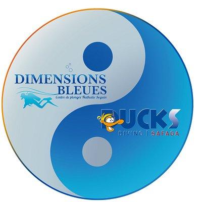 Ducks Safaga ab jetzt in enger Partnerschaft mit Ihren franz. Kollegen von Dimensions Bleues !!!