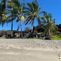 Oceanview Hawaii