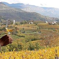 Degustare un buon vino con il panorama dalla cantina Tasting an excellent wine with view from the cellar