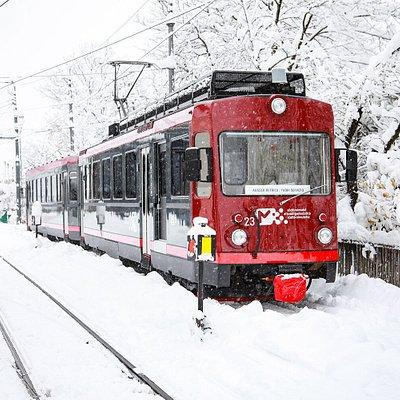 Rittner Bahn Treno del Renon