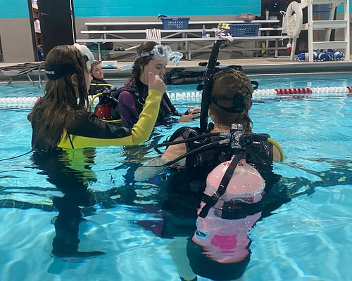Come learn to dive with Scuba Adventure and travel with us anywhere.  From diving locally to diving Hoover Dam to Cozumel.     We also do fundraising for disabled divers every year with our underwater poker tournaments.