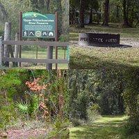 Nice preserve, nice wide trails. An east hike!