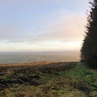 Ballyboley Forest 3