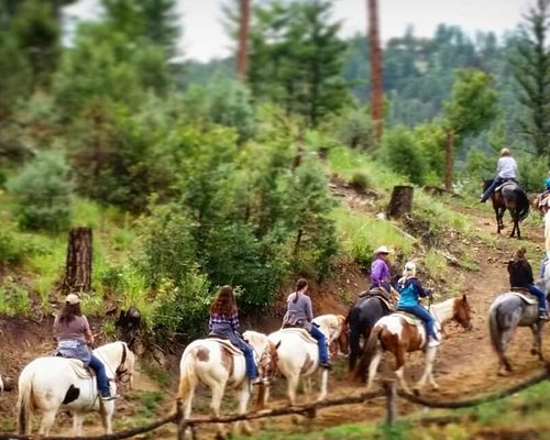 Grindstone Stables 1 hour trail rides.