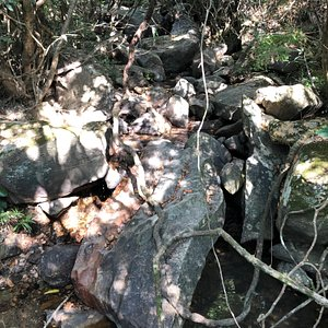 xSai Kung West Country Park - wild countryside