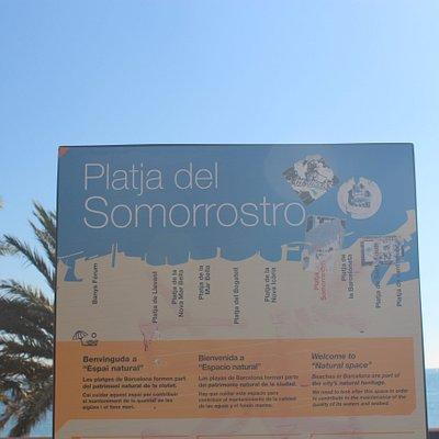 Platja Del Somorrostro