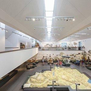 Blick in den grössten Ausstellungsraum des Naturmuseums mit dem Relief der Ostschweiz als Herzstück.
