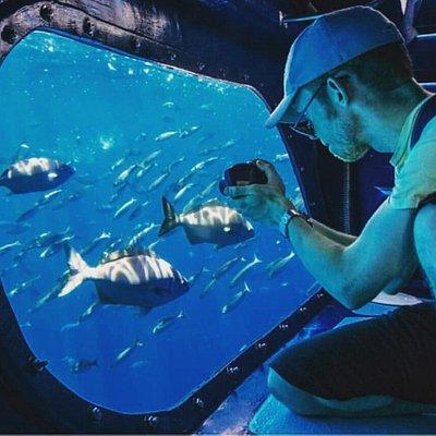 ces desde la visión submarina de nuestro Fancy