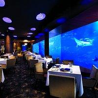 Ocean Restaurant Main Dining