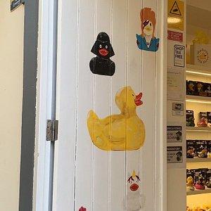 Madeira Duck Store