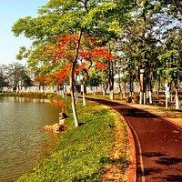 el alrededor para caminar es de lo mejor para quienes lo visitan