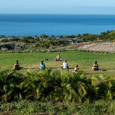 Yoga on the infinity lawn at The Dragon Fruit Farm