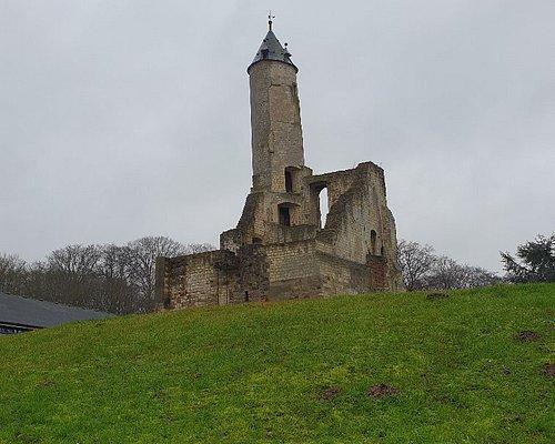 Donjon De Labuissière
