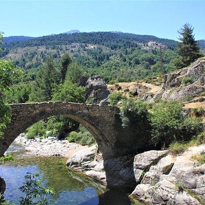 Ponte Altu est un pont génois sur le Golo