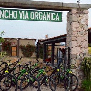 Tours de bicicleta / Bike tours