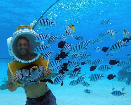 Introductory helmet diving in Bora Bora with Aqua Safari