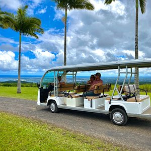 Mini busses are available to all guests who take the farm tour. Spacious seating allows for social distancing.