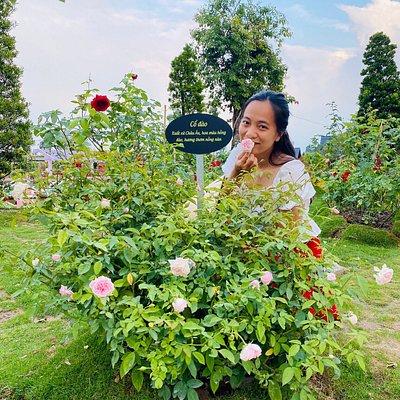 Nơi khai sinh hoa hồng Sa Đéc Khám phá cội nguồn làng hoa Sadec qua GIAI THOẠI HOA HỒNG TƯ TÔN  và những cột mốc lịch sử gắn liền với ông, với làng hoa Sa Đéc và với cả lịch sử hoa hồng ở Việt Nam.
