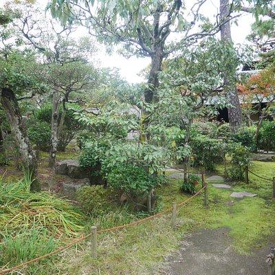 庭園内の様子