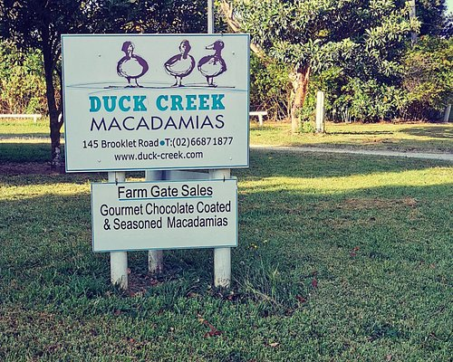 Farm Gate Sales Monday to Friday. Try delicious world famous Duck Creek Macadamias roasted and chocolate coated treats.