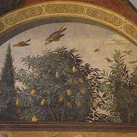 Cenacolo di Ognissanti - particolare (4)