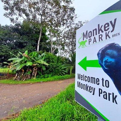 entrance to MONKEY PARK