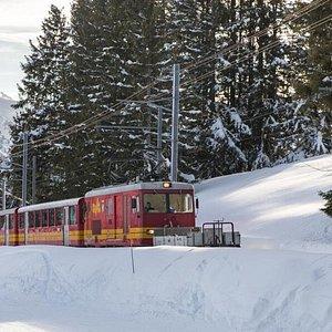Train Bex-Villars-Bretaye en hiver