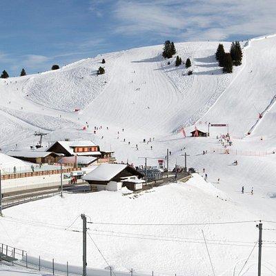 Train Bex-Villars-Bretaye en hiver; arrivée à Bretaye à 1810 mètres d'altitude.